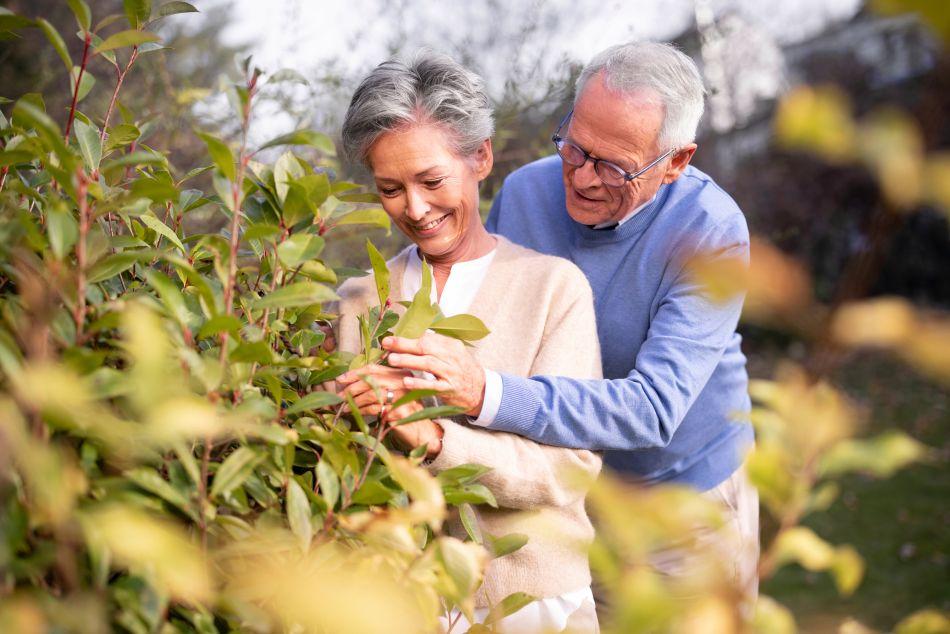 Teilverkaeufer Ehepaar im Garten