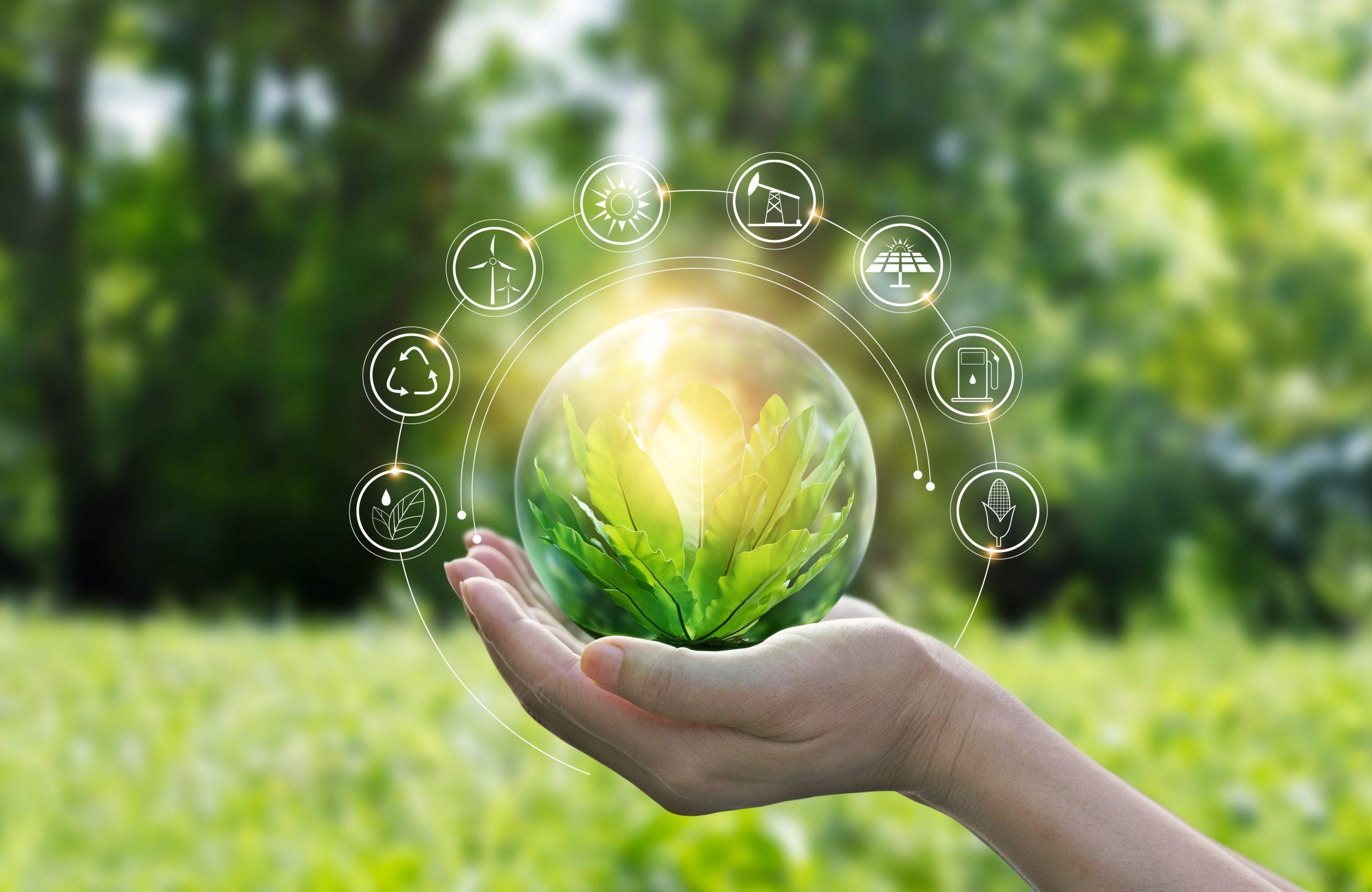 Nachhaltig leben – Tipps für den Alltag